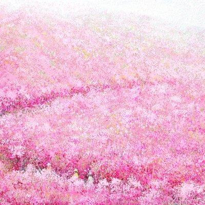 [A1073-0144] 가지산의 봄 햇살