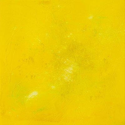 [A1113-0003] yellow iris
