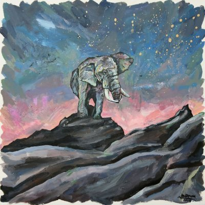 [A1119-0001] Elephant on Rock
