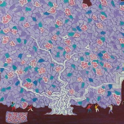 [A1123-0007] 왕버드나무(king tree)10