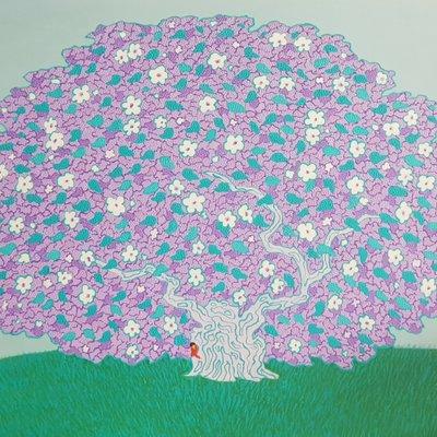 [A1123-0094] 왕버드나무 50