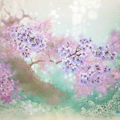 [A1126-0005] Cherry Blossom3