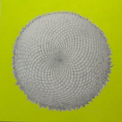 [A1133-0026] Sunflower