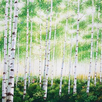 [A1136-0058] 숲-햇살 좋은 날