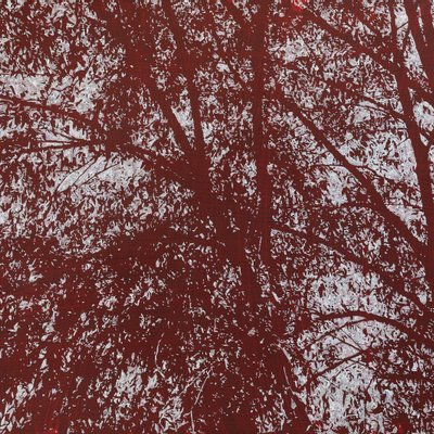 [A1138-0051] 붉은 숲