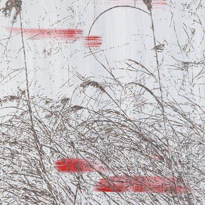 [A1138-0055] 버드나무