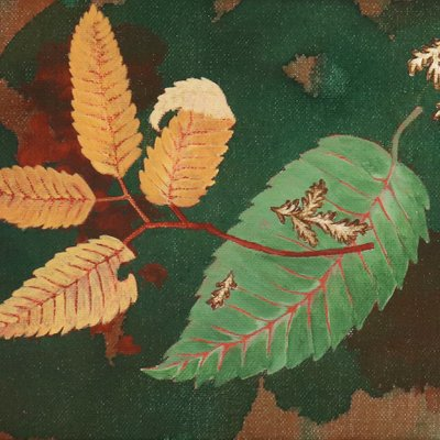 [A1165-0025] 나뭇잎
