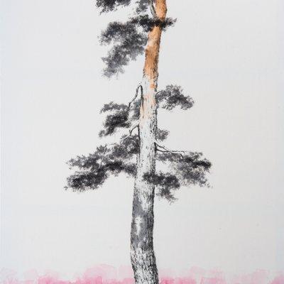[A1257-0004] 초근목피