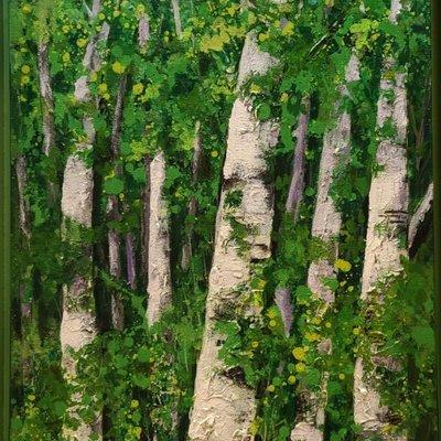 [A1263-0057] 자작 나무(행복한 4계절, 봄여름,)20-8