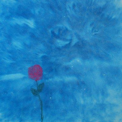 [A1368-0003] 장미와 장미구름