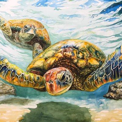[A1380-0004] Sea turtle-4