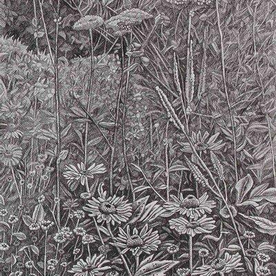 [A1414-0005] Plant Community3